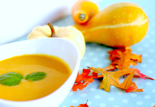 Butternut Squash and Pumpkin Soup